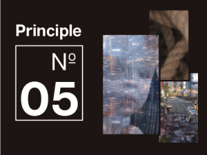 Principle 5 - Get curious about complexity